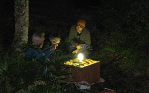 Moth trapping as part of the Barbastelle bat project