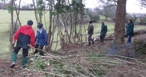Hedge Laying Training