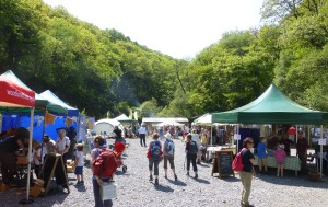 Looking around the Woodland Festival